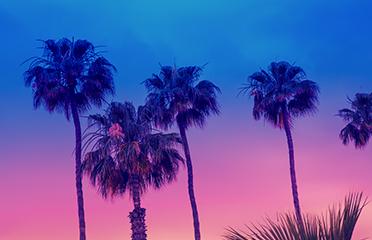 CW Luxury Villas Ibiza